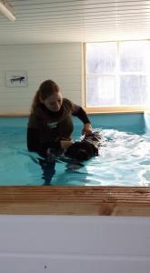 Hydrotherapie sessie Blits