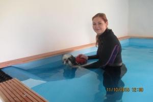 honden hydrotherapie