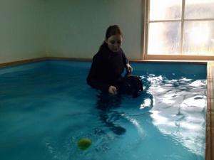 honden hydrotherapie, contact